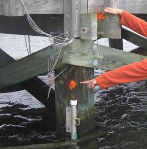 Storm Surge Sensor Deployment at Montauk